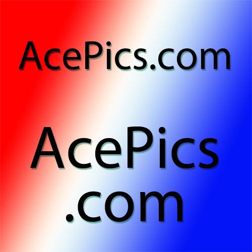 Premium Domain Name= AcePics.com